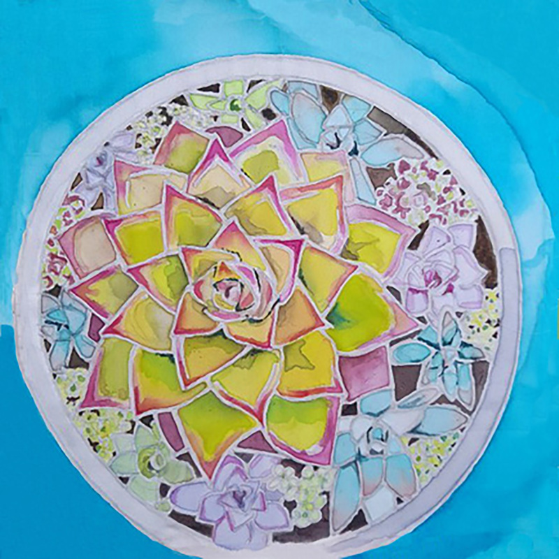 A card of succulents in a bowl