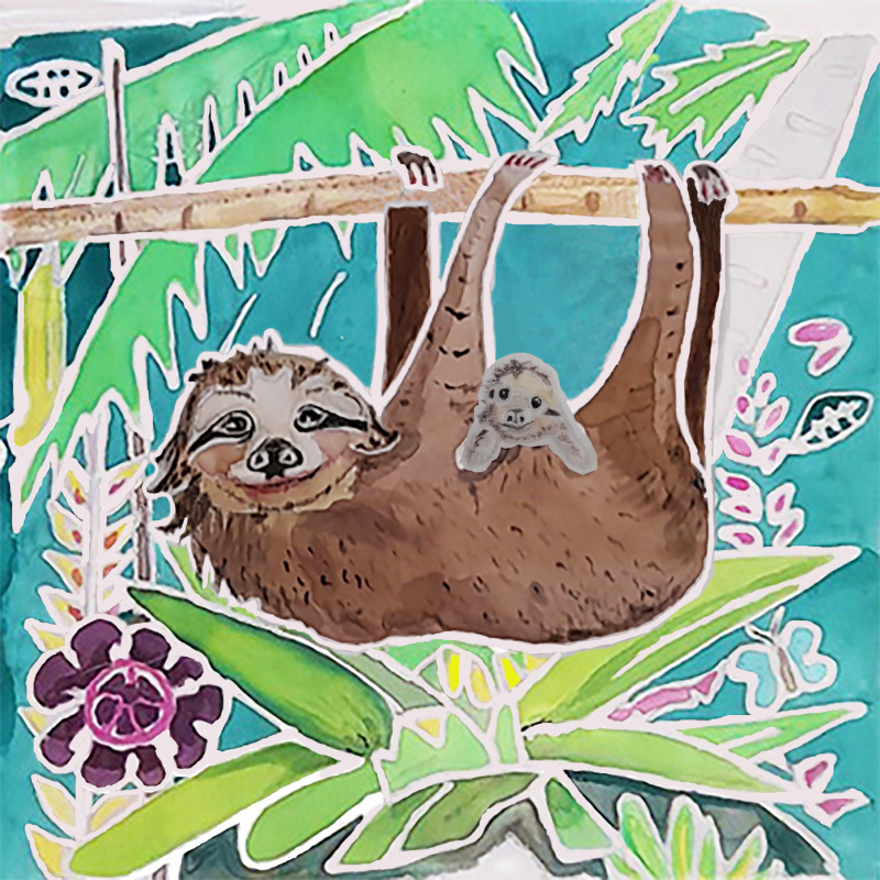A card of a Lady Sloth